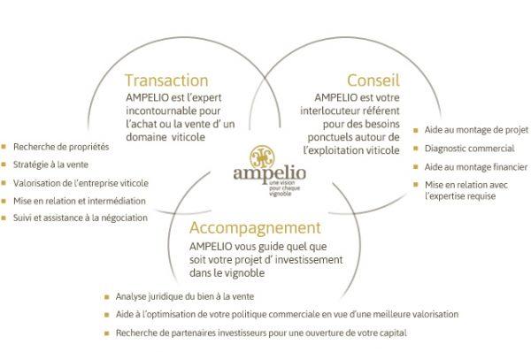 schéma notre expertise dans la transmission viticole