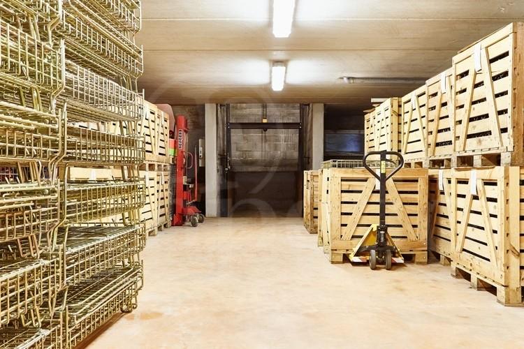 anjou-domaine-viticole-de-17ha-au-coeur-d-un-village-vigneron (1)
