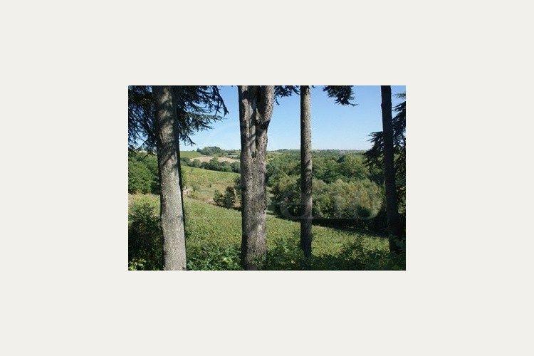Propriété vendue Anjou, château de Suronde (2016)