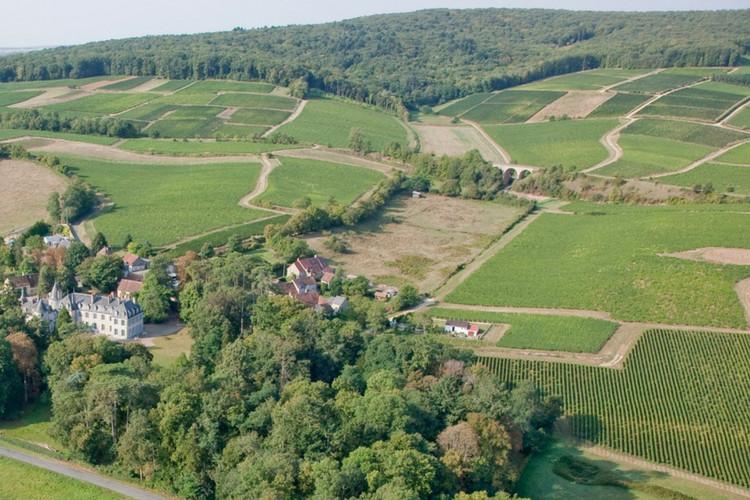 Propriété viticole vendue Sancerre Château de Thauvenay (2016)