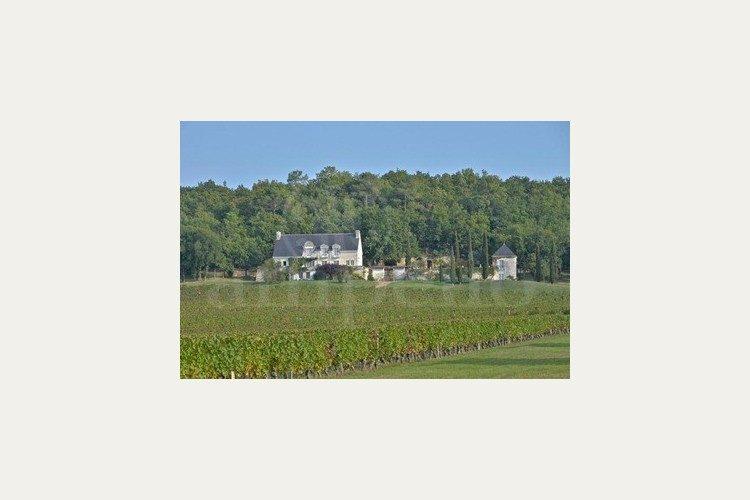 propriete-viticole-en-aop-chinon (3)