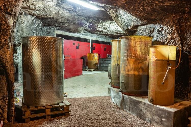 saumur-domaine-viticole-de-24-ha-avec-caves-troglodytes (1)