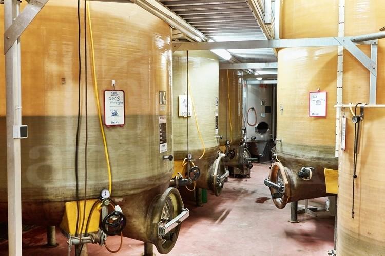 Touraine domaine viticole ref 176