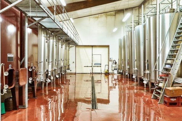 touraine-cote-cher-domaine-viticole-d-une-trentaine-d-hectares-en-appellation-touraine-et-valencay