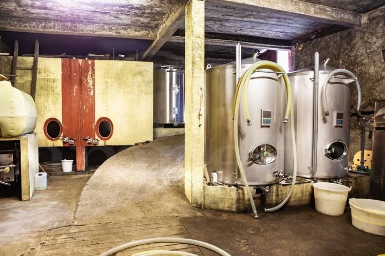 touraine-cote-loire-propriete-viticole-de-8-ha-sur-l-appellation-vouvray (1)