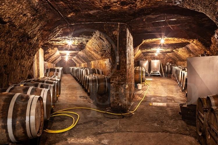 touraine-cote-loire-propriete-viticole-de-8-ha-sur-l-appellation-vouvray (2)