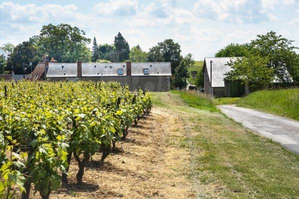 Touraine domaine viticole Vouvray ref 193