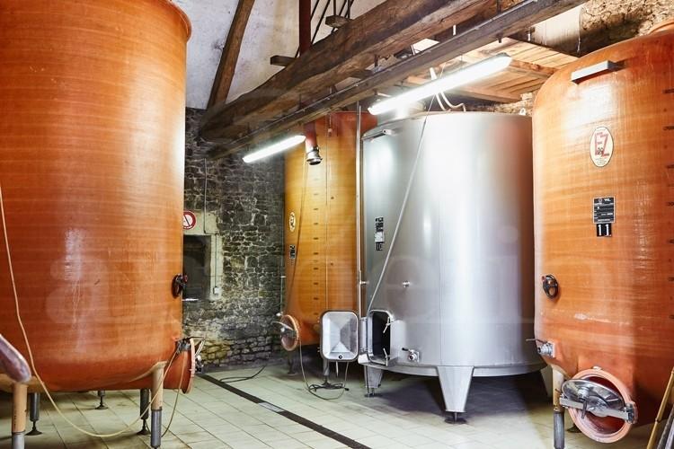 touraine-propriete-viticole-10-ha-de-vignes-autour-d-un-chateau-ismh (1)