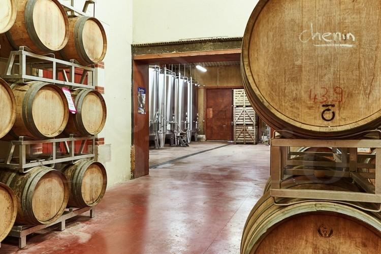 touraine-valencay-propriete-viticole-de-17-ha