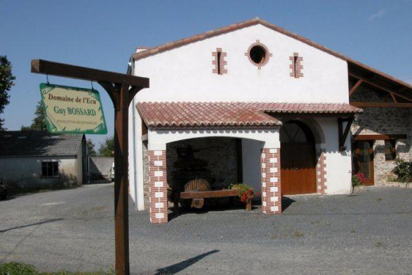Vignoble vendu-muscadet-domaine-de-l-ecu (2011)