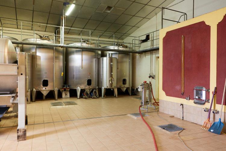 cave muscadet vins