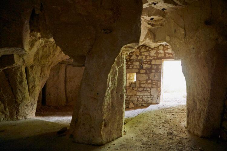 cave troglodyte