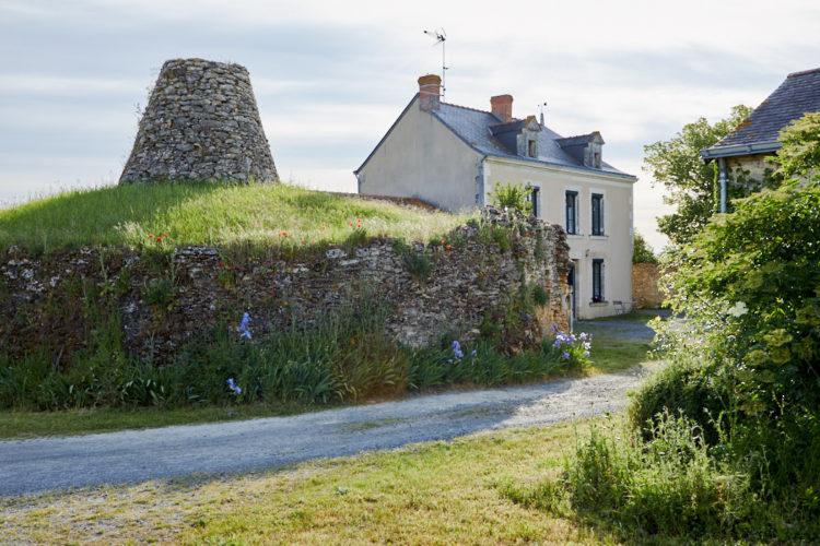Domaine viticole Anjou ref 201