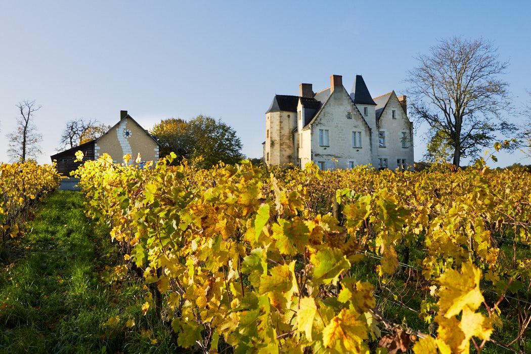 Domaine viticole de charme en Touraine ref 212