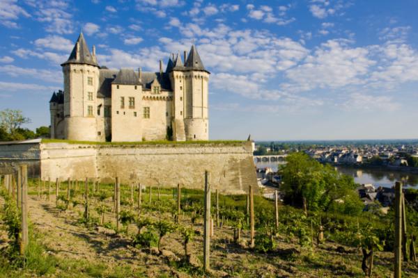 Vignoble de Saumur et château